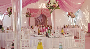 Wedding in pale pink colors